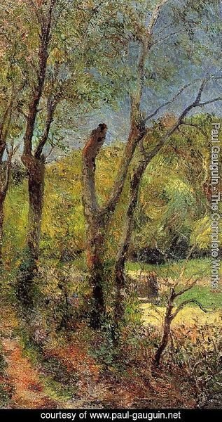Paul Gauguin - Willows